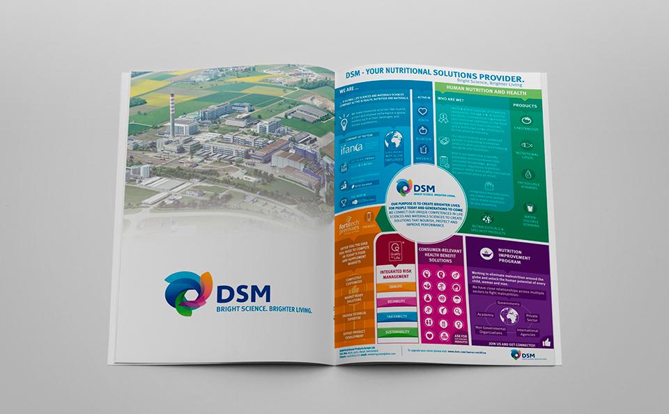 dsm-infographic02