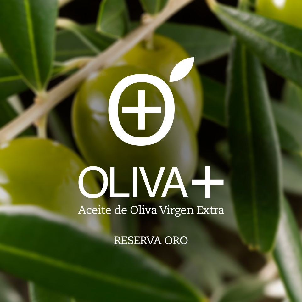 Oliva +