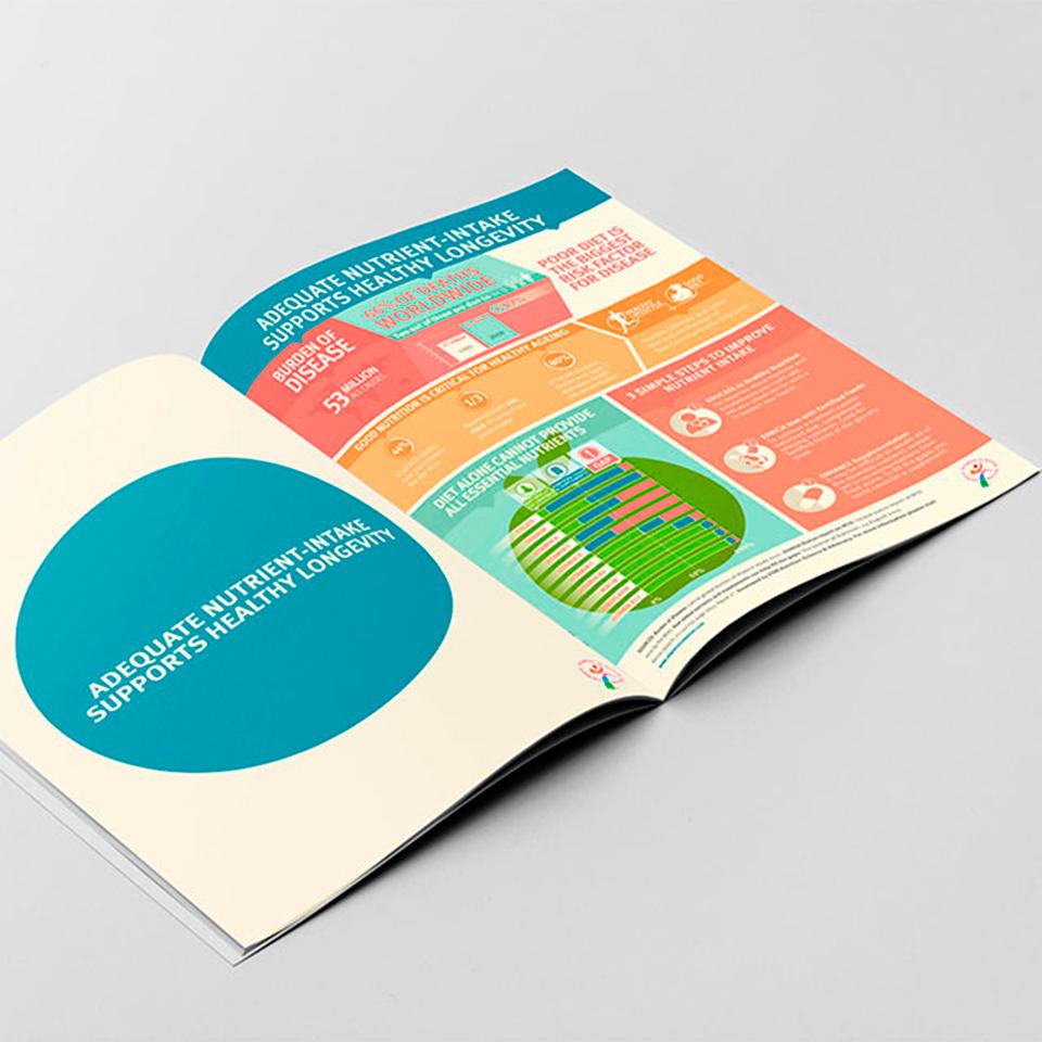 DSM infografía